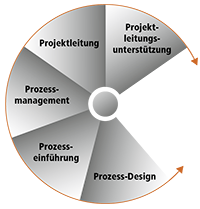 Projekt-Consulting